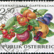 A stamp printed in Austria, devoted to the International Garden Show, Vienna, shows Fruits, circa 1974 — Stock Photo