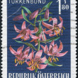 A stamp printed in Austria, alpine flower shows, Lilium martagon, circa 1966 - Stock Photo