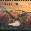 A stamp printed in Austria, shows Brandt's Bat (Myotis brandtii), circa 2007 — Stock Photo