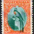 A stamp printed in the Guatemala, shows a national symbol, bird Resplendent Quetzal, circa 1935 - Stock Photo