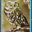A stamp printed in the Equatorial Guinea, shows The Little Owl (Athene noctua), circa 1976 — Stock Photo