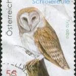 AUSTRIA - CIRCA 2009: A stamp printed in Austria, shows a Western Barn Owl (Tyto alba), circa 2009 — Stock Photo #12086969