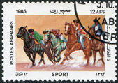 A stamp printed in the Afghanistan, is shown Peg sticking, circa 1985 — Stock Photo
