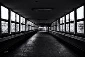 Tunnel vuoti e abbandonati. bianco e nero. styling. fiore grande. — Foto Stock