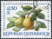 A stamp printed in Austria, devoted to the International Garden Show, Vienna, shows pears on a branch, circa 1972 — Stok fotoğraf