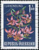 A stamp printed in Austria, alpine flower shows, Lilium martagon, circa 1966 — Stok fotoğraf
