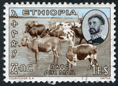 ETHIOPIA - CIRCA 1965: A stamp printed in the Yemen, was shown in cattle to pasture, circa 1965 — Stock Photo
