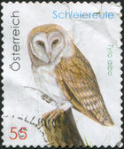 AUSTRIA - CIRCA 2009: A stamp printed in Austria, shows a Western Barn Owl (Tyto alba), circa 2009 — Stock Photo