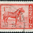 A stamp printed in the Argentina, depicts a horse, circa 1959 — Stock Photo