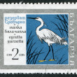 A stamp printed in the Bulgaria, shows the Little Egret (Egretta garzetta), Srebarna Nature Reserve, circa 1960 - Stock Photo