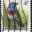 Stock Photo: Stamp printed in Belgium, depicts bird Bluethroat (Luscinisvecica), circ1989
