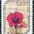 Royalty-Free Stock Photo: A stamp printed in Cuba shows an orchid (Dendrobium phalaenopsis), circa 1986