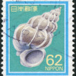Stamp printed in Japan, depicts Epitonium scalare, circ1989 — Stock Photo #12162786