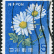 A stamp printed in Japan, depicts a flower chrysanthemum, circa 1966 — Stock Photo