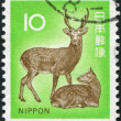 A stamp printed in Japan, depicts Cervus nippon, circa 1972 - Stock Photo