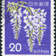 A stamp printed in Japan, shows a flowering Wisteria sinensis, circa 1969 - Stock Photo
