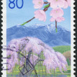Stock Photo: Stamp printed in Japan, Prefecture Yamanashi, flowering cherry and depicts Mount Yatsugatake, circ2007