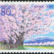A stamp printed in Japan, prefecture Miyagi, portrayed Cherry Blossoms, circa 2000 — Stock Photo