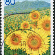 A stamp printed in Japan, Prefecture Yamanashi, shows the field of sunflower and mountain Yatsugatake, circa 2005 — Stock Photo