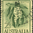 Stock Photo: Stamp printed in Australia, shows Wattle (Acacimelanoxylon), circ1959