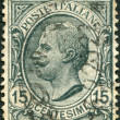 A stamp printed in Italy, shows the King of Italy Victor Emmanuel III, circa 1919 — Stock Photo #12163205