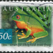 A stamp printed in Australia, shows the Orange-thighed Frog (Litoria xanthomera), circa 2003 - Stock Photo