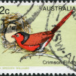 A stamp printed in Australia, shows the Crimson Finch (Neochmia phaeton), circa 1979 - Stock Photo
