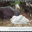 A stamp printed in Australia (Antarctic Territory), shows the Northern giant petrel (Macronectes halli), circa 1992 — Stock Photo