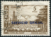 A stamp printed in the Argentina, shows the Tierra del Fuego Province and flock of sheep (overprint Servicio Oficial 1966), circa 1959 — Stock Photo