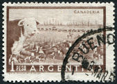 A stamp printed in the Argentina, depicts Cattle ranch (Ganaderia), circa 1958 — Foto Stock