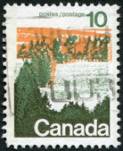 フォレスト、1972 年頃の中央カナダを示します、カナダの切手の印刷 — ストック写真