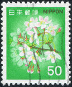 A stamp printed in Japan, shows a flowering cherry, circa 1980 — Stock Photo