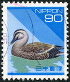 A stamp printed in Japan, depicts Spotbill (Anas poecilorhyncha), circa 1994 — Stock Photo