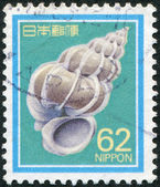 A stamp printed in Japan, depicts Epitonium scalare, circa 1989 — Stock Photo