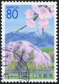 A stamp printed in Japan, Prefecture Yamanashi, flowering cherry and depicts Mount Yatsugatake, circa 2007 — Stock Photo