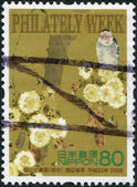 A stamp printed in Japan, dedicated to Philately Week, shows a bird sitting on a branch of the cherry blossoms, circa 2008 — Stock Photo