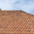 The roof of tiles and chimney against the sky. — Stock Photo #12243194