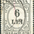 ROMANIA - CIRCA 1924: A stamp printed in the Romania, Postage Due Stamps, circa 1924 — Stock Photo
