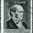 Stock Photo: ROMANI- CIRC1959: stamp printed in Romania, portrait of Charles Darwin, circ1959