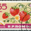 ROMANIA - CIRCA 1963: A stamp printed in the Romania — Stock Photo