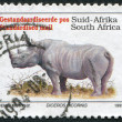 SOUTH AFRICA-CIRCA 1993: A stamp printed in the South Africa, represented Black Rhinoceros (Diceros bicornis), circa 1993 — Zdjęcie stockowe