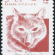 SAHARA - CIRCA 1992: A stamp printed in Sahrawi Arab Democratic Republic (SADR) - Stock Photo