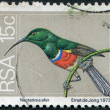 SOUTH AFRICA - CIRCA 1974: A stamp printed in South Africa (RSA) — Stock Photo #12363277
