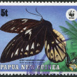 PAPUA NEW GUINEA - CIRCA 1988: Postage stamps printed in Papua New Guinea, depicts a butterfly Queen Alexandra's Birdwing (Ornithoptera alexandrae), circa 1988 — Stock Photo #12363440