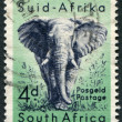 SOUTH AFRICA-CIRCA 1954: A stamp printed in the South Afric - Stock Photo