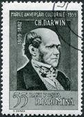 ROMANIA - CIRCA 1959: A stamp printed in the Romania, the portrait of Charles Darwin, circa 1959 — Stock Photo
