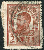 ROMANIA - CIRCA 1909: A stamp printed in the Romania, shows the King of Romania, Carol I, circa 1909 — Stock Photo
