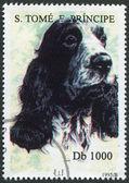 S. TOME E PRINCIPE - CIRCA 1995: A stamp printed in the S. Tome e Principe — Stock Photo