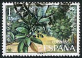 SPAIN-CIRCA 1973: A stamp printed in the Spain — Stock Photo
