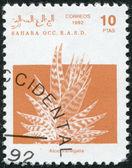 Description:SAHARA - CIRCA 1992: A stamp printed in Sahrawi Arab Democratic Republic (SADR) — Stock Photo